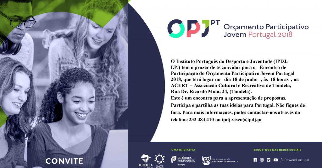 ORÇAMENTO PARTICIPATIVO JOVEM PORTUGAL 2018 discutido em Tondela